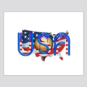 Baseball in the USA Small Poster