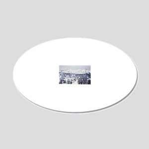 View from Mt Rainier 20x12 Oval Wall Decal