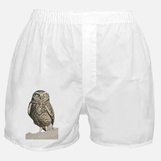 Burrowing Owl T-Shirt Boxer Shorts