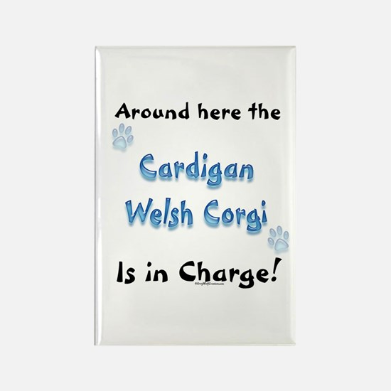 Welsh Corgi Charge Rectangle Magnet