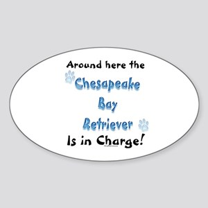 Chessie Charge Oval Sticker