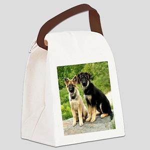 00-cover-vega-brutus-wildeshots-0 Canvas Lunch Bag