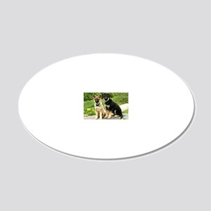 00-cover-vega-brutus-wildesh 20x12 Oval Wall Decal
