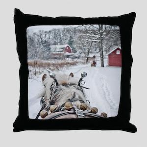 20101218-099 Throw Pillow