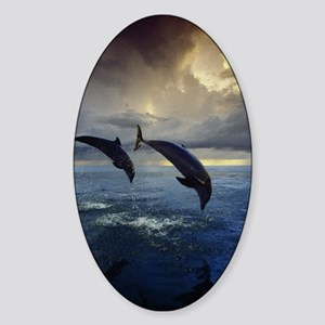 Dolphins At Sunset Oval Sticker