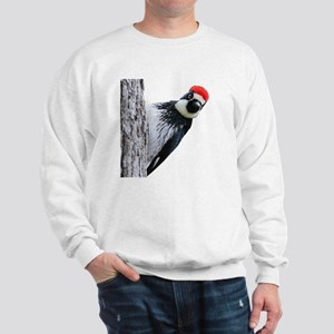 Acorn Woodpecker Bird T-Shirt Sweatshirt