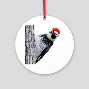 Acorn Woodpecker Bird T-Shirt Round Ornament