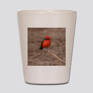 Vermilion Flycatcher Bird T-Shirt Shot Glass