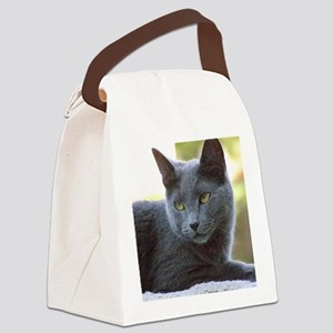 Gray Cat Canvas Lunch Bag