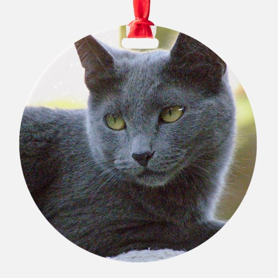 Gray Cat Ornament