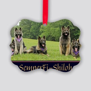 magnet-wildeshots-051411 716b Picture Ornament
