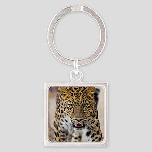 leopardrunningwebSquare Square Keychain