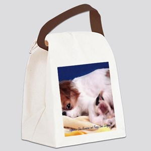 Hermione-Wallet-Blue-Back Canvas Lunch Bag