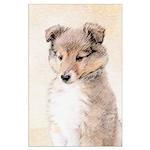 Shetland Sheepdog Puppy Large Poster