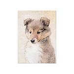 Shetland Sheepdog Puppy 5'x7'Area Rug