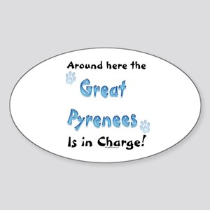 PYR Charge Oval Sticker