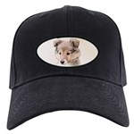 Shetland Sheepdog Puppy Black Cap with Patch