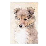 Shetland Sheepdog Puppy Postcards (Package of 8)