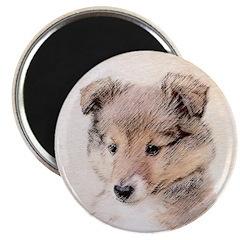 Shetland Sheepdog Puppy Magnet