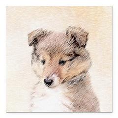Shetland Sheepdog Puppy Square Car Magnet 3