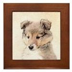 Shetland Sheepdog Puppy Framed Tile