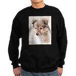 Shetland Sheepdog Puppy Sweatshirt (dark)
