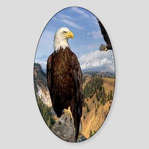 eagles2 Sticker (Oval)