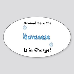 Havanese Charge Oval Sticker