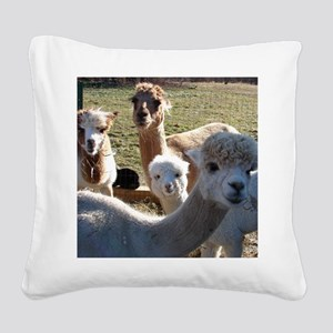 ALPACA FAMILY PORTRAIT III Square Canvas Pillow