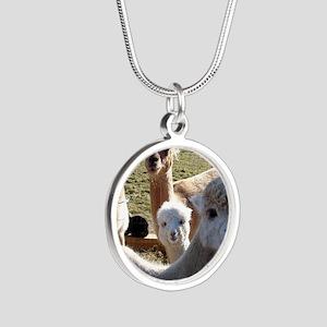 ALPACA FAMILY PORTRAIT III Silver Round Necklace
