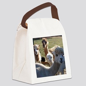 ALPACA FAMILY PORTRAIT III Canvas Lunch Bag