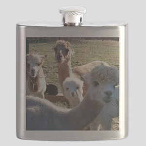 ALPACA FAMILY PORTRAIT III Flask