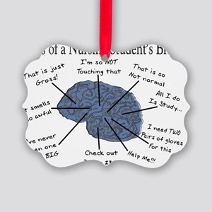 Atlas of a Nursing Student Brain  Picture Ornament