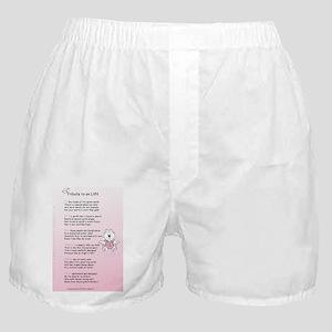 LVN-tribute-fempd Boxer Shorts