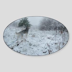 Czar Demon in Snow 1 Sticker (Oval)