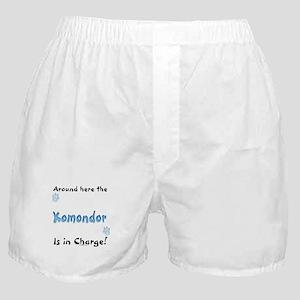 Komondor Charge Boxer Shorts