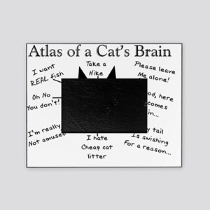 Atlas of a Cats Brain Picture Frame