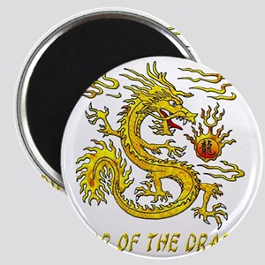 Year Of The Dragon Gold Letters 3D Magnet