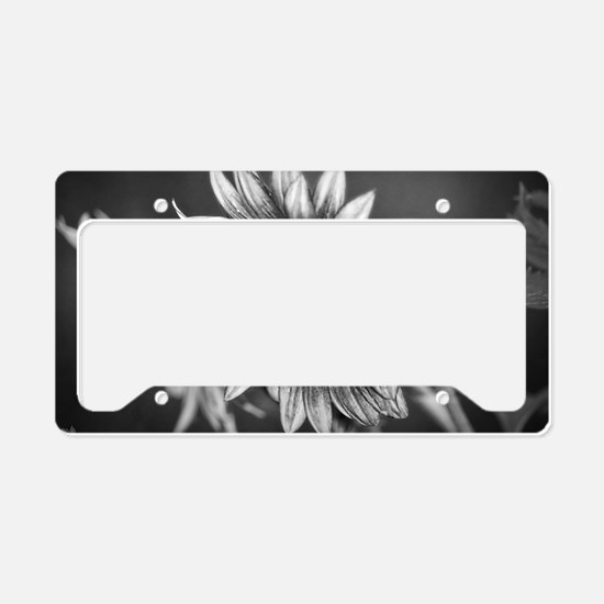 Black and White Sunflower License Plate Holder