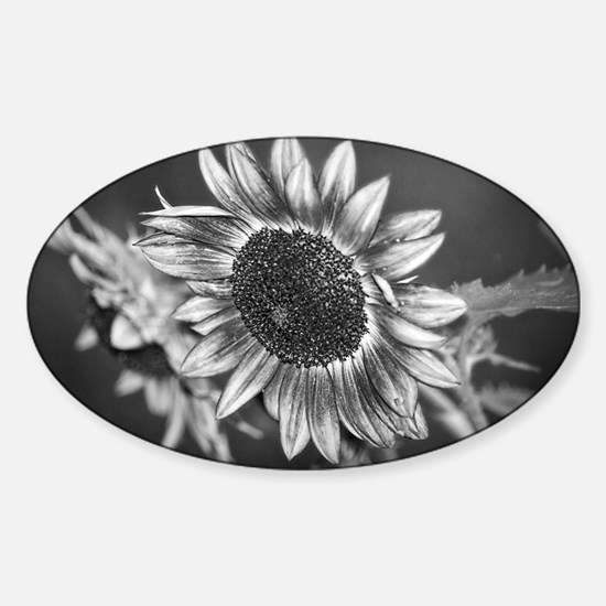 Black and White Sunflower Sticker (Oval)