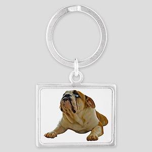 FIN-bulldog-lying-photo-CROP Landscape Keychain