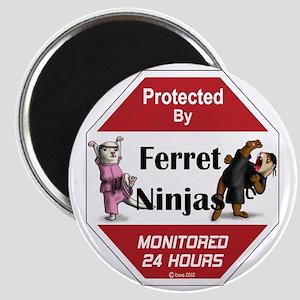 Ninja Protection Magnet