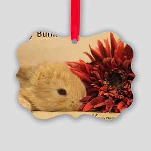 Baby Bunny Calendar Cover Picture Ornament