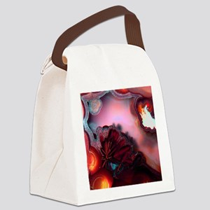 Fire-Agate-Quartz-iPad 2 Canvas Lunch Bag