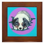 Australian Shepherd Puppy Framed Tile