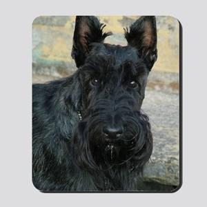 handsomedugan Mousepad