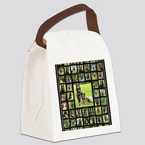 blanket-imladris Canvas Lunch Bag