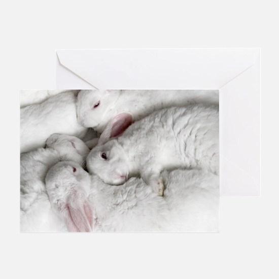 01-January-babies Greeting Card