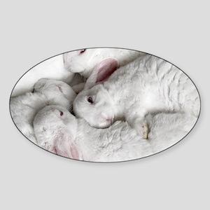 01-January-babies Sticker (Oval)