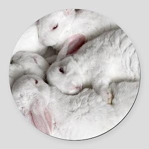 01-January-babies Round Car Magnet